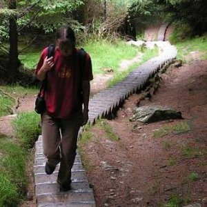 18.7.2005  11:34 / Chodník nahor pozostával z takmer 600 schodíkov